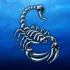 Black Scorpion or White Scorpion